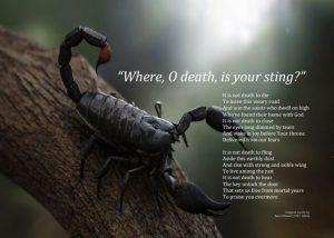 O Death Where Is Your Sting?